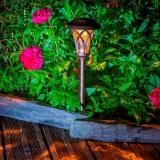 EDEN solar lamp to plant Ř13,5 x 36 cm
