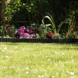 Green border lawn edging